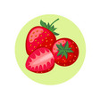 strawberry berries in green circle vector image