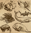Underwater Sea Life set no4 - hand drawn vector image