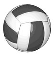 black and white volleyball ball on white vector image