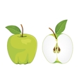 Green apple whole and half apple set vector image