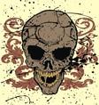 grunge floral skull vector image vector image