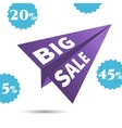 Large Discounts big sale airplane in the vector image vector image