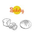 sketch dark brown sliced bread set vector image vector image