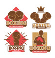 boxing championship sport school and private club vector image