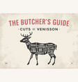 cut of meat set poster butcher diagram scheme vector image vector image