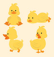 cute yellow ducks cartoon set vector image
