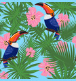 exotic toucan and flowers pattern cartoon style vector image
