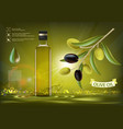 glass bottle with oil vector image vector image