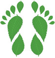 Green footprint vector image vector image