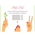 manicure hands template vector image