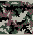 military texture pattern vector image