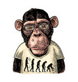 monkeys dressed in a t-shirt with the theory of vector image vector image