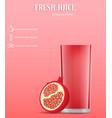 pomegranate fresh juice concept background vector image