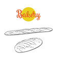 sketch white loaf bread french baguette set vector image