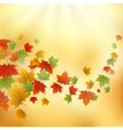 Gold autumn background vector image vector image