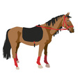 horse on a white background vector image vector image