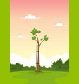 spring young tree - morning of life vector image
