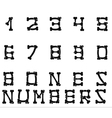 Bones numbers white vector image vector image