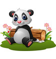 cartoon panda sitting vector image vector image
