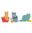 funny little cats vector image vector image