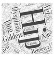 Hip Dysplasia And Golden Retrievers Word Cloud vector image vector image