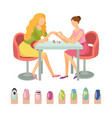 manicure manicurist and client icons set vector image vector image