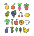 Set of colorful healthy eco fruit and vegetables vector image
