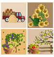 vintage set with sunflowers grapes and tractor vector image vector image