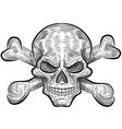 skull sketch design vector image