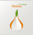 Abstract Paper Onion vector image vector image