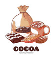 cocoa product hand drawn banner isolated vector image vector image