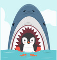 penguin swimming inflatable ring with shark vector image vector image