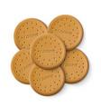simple cracker chip cookies vector image