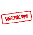 subscribe now vector image vector image