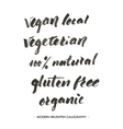 Vegan local etc Modern brushpen calligraphy vector image