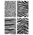 Zebra pattern vector | Price: 1 Credit (USD $1)