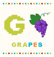 alphabet for children letter g and grapes vector image vector image