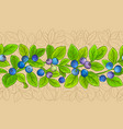 bilberry branches pattern vector image
