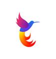 pelican colorful design vector image vector image