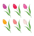 set of beautiful colour flowers vector image vector image