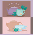 set of teapots with tea cups of herbs vector image