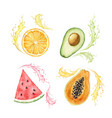watercolor hand painted set exotic vector image vector image