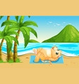 a cat on summer holiday vector image vector image
