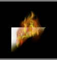 burning white paper with fire flame vector image vector image