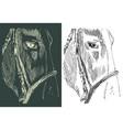 hand drawn sketch a horse head close up vector image