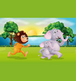 lion and elephants running in park vector image vector image