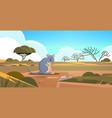quokka enjoying sun in australia desert