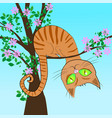 red cat in a tree vector image