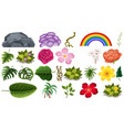 set flowers and leaves vector image vector image