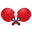 Two professional racket for table tennis vector image vector image